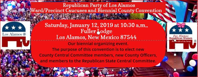 County Convention Ad 2019