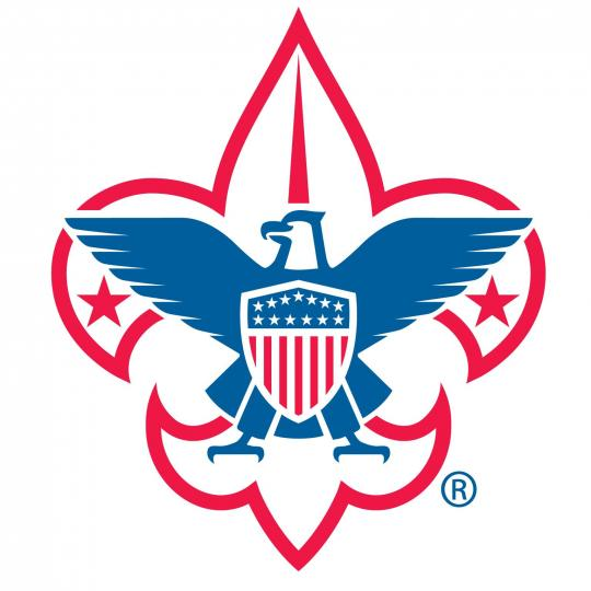 vfw - scout of the year - logo