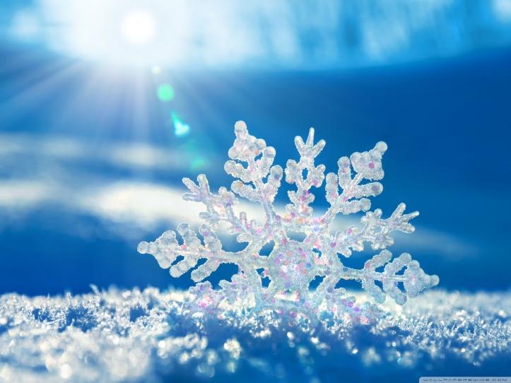snow-iamge
