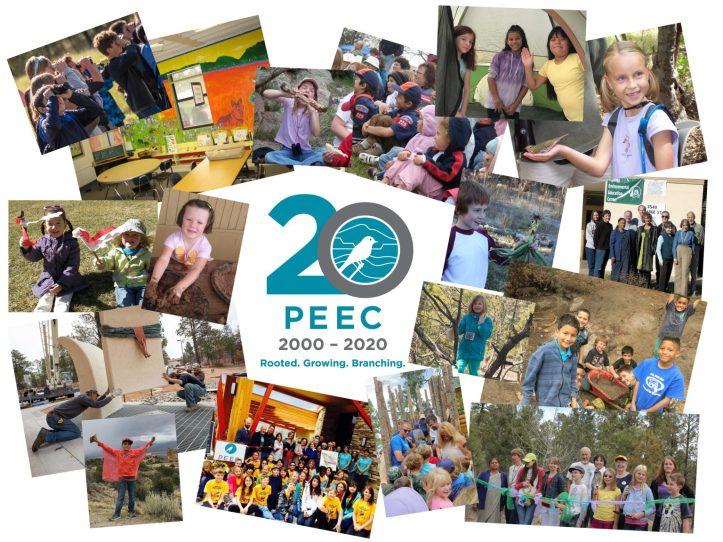 2020-PEEC-Collage-AprilUpdate-HighQual-1536x1152