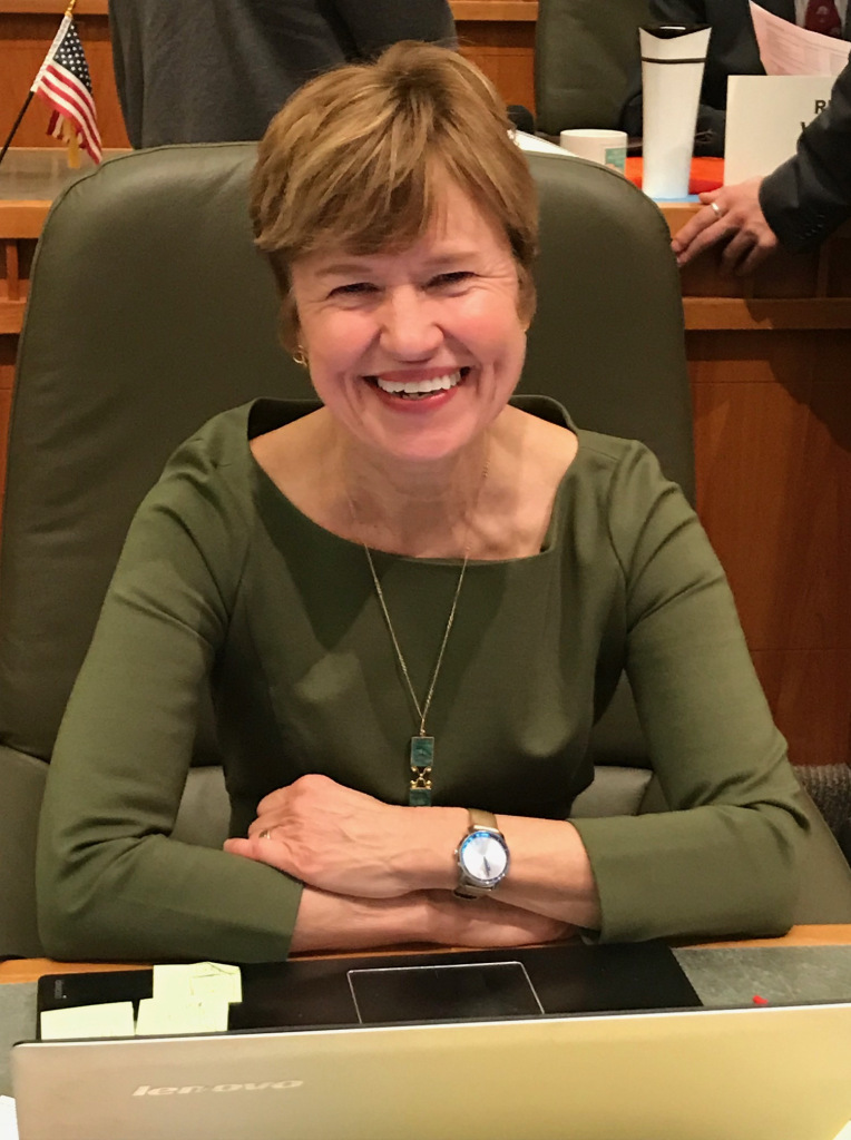 Rep. Christine Chandler Speaks To County Council On Legislative Session,  What Passed, How COVID Measures Worked – Los Alamos Reporter